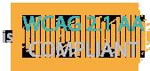 WCAG 2.1 AA Compliance