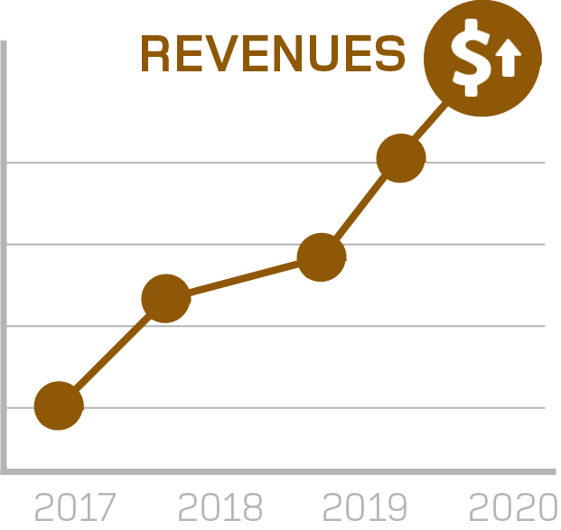 revenue graph
